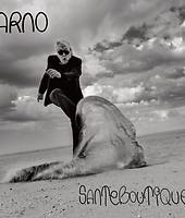 Arno - SANTEBOUTIQUE - sorti le 13 septembre 2019 chez Naïve